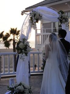 Wedding_297_3